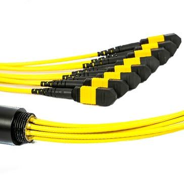 MTP Cables