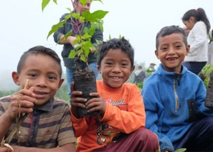 Universal Networks supports planting of 200 trees in Guatemala and Madagascar